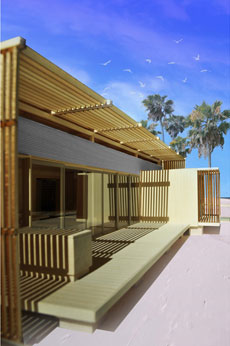 Illustration of FLeX House on a beach. In the background are palm trees and sea gulls.
